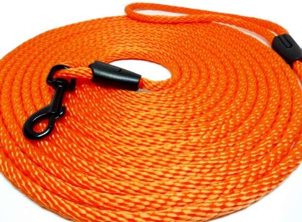 Laisse pour chat néon orange de haute qualité de 5 et 10 mètres de long