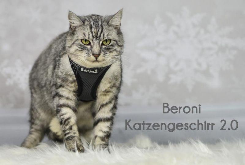 chiot chaton lapin gilet,bleu fonc/é,M smalllee/_lucky/_store police harnais pour chat avec laisse anti /évasion denim harnais chien petit pour marcher,anti traction reglable facile /à mettre